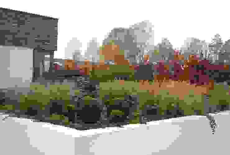 MUGO OGRODY Modern Garden