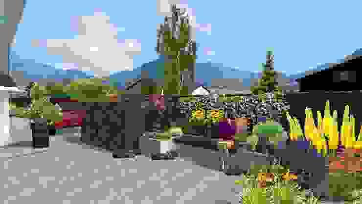 Jardin sinueux Balcon, Veranda & Terrasse modernes par Anthemis Bureau d'Etude Paysage Moderne
