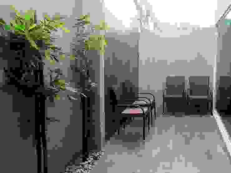 Jardines modernos: Ideas, imágenes y decoración de Espacios que Inspiran Moderno Bambú Verde