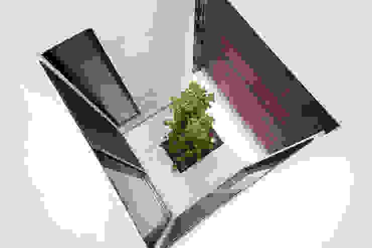 坪庭3 モダンな庭 の 大坪和朗建築設計事務所 Kazuro Otsubo Architects モダン 木 木目調