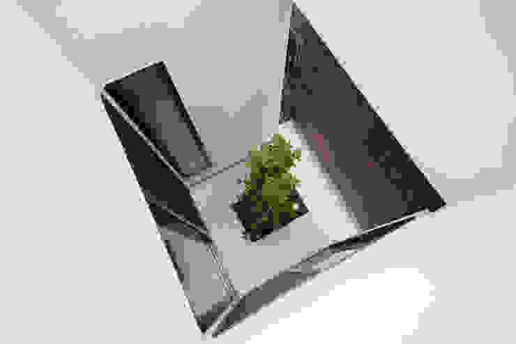 모던스타일 정원 by 大坪和朗建築設計事務所 Kazuro Otsubo Architects 모던 우드 우드 그레인