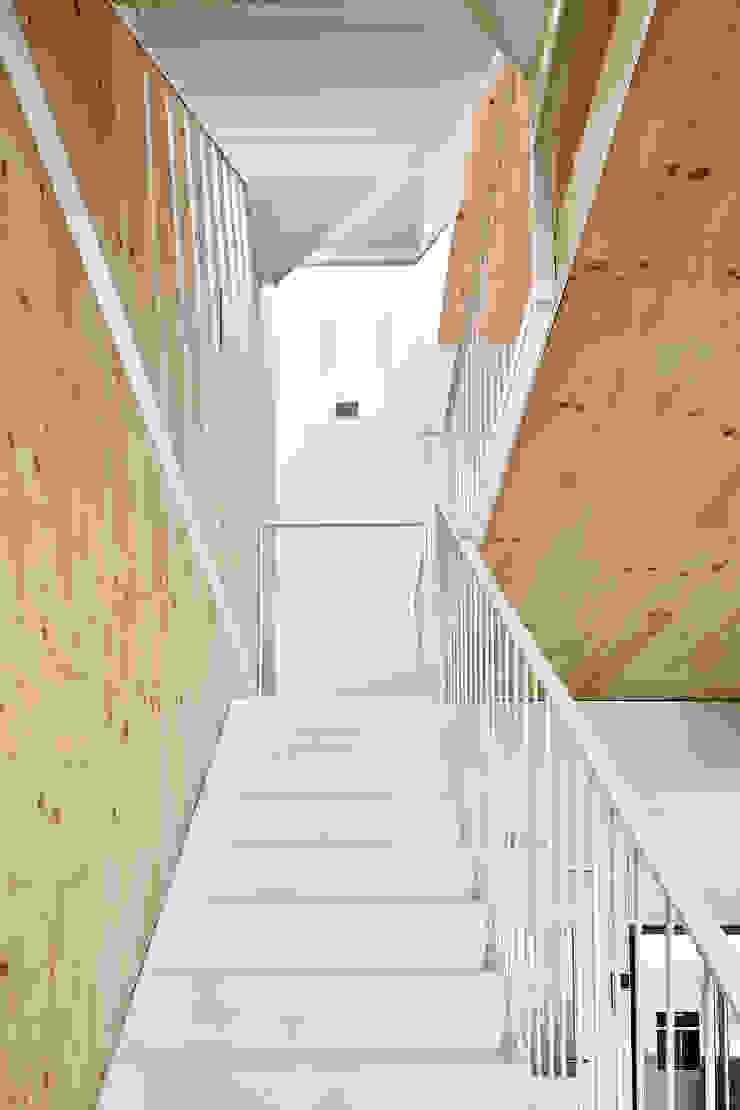 59RUT New house between dividing walls in the centre of Terrassa Minimalist corridor, hallway & stairs by Vallribera Arquitectes Minimalist