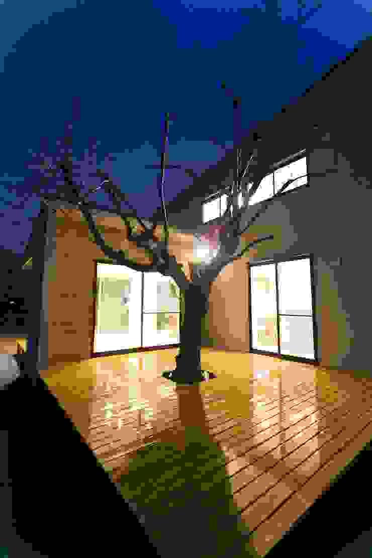 桜を眺める家 モダンな 家 の TKD-ARCHITECT モダン 木 木目調