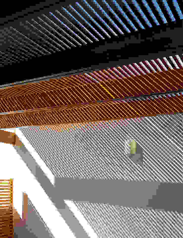 Proyección de sombras de CABSA Taller de Carpintería & Arquitectura