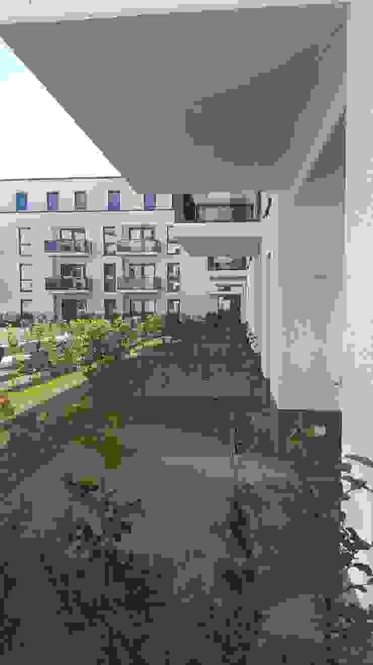 Jardines modernos de SUD[D]EN Gärten und Landschaften Moderno