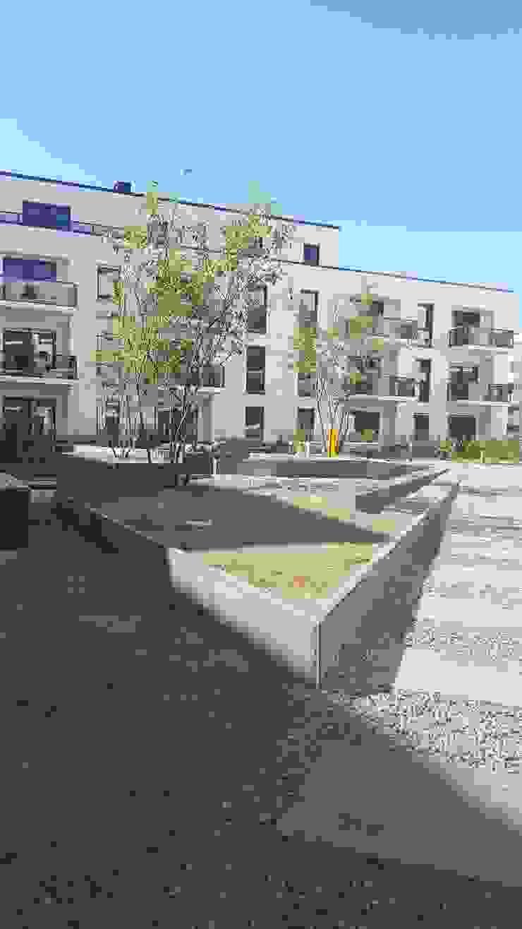 Modern style gardens by SUD[D]EN Gärten und Landschaften Modern