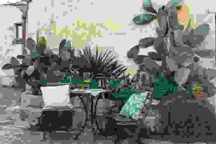 Jardins mediterrâneos por Boite Maison Mediterrâneo