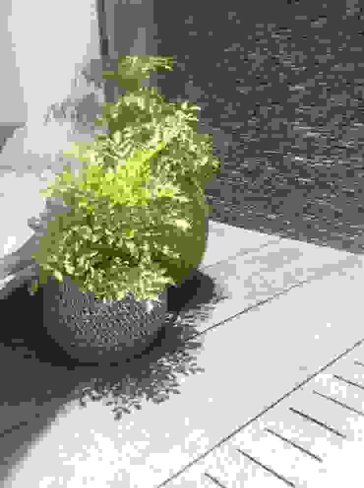 Proyecto La Castellana. Balcones y terrazas de estilo moderno de THE muebles Moderno