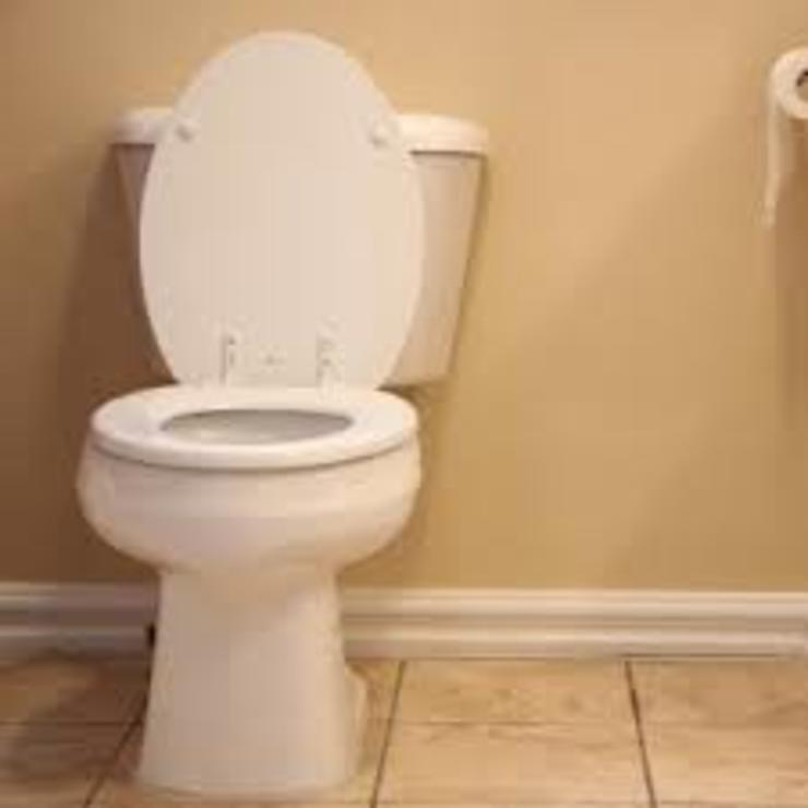 Toilet unblocking project by Plumber Auckland