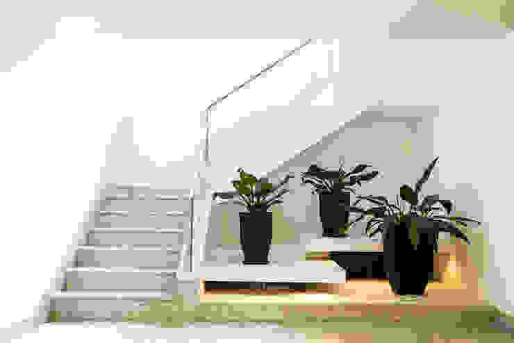 Couloir, entrée, escaliers modernes par Cecília Mesquita Arquitetura Moderne