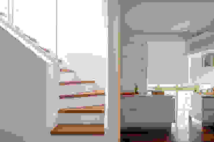 piergiorgio corradin photographer Couloir, entrée, escaliersEscaliers