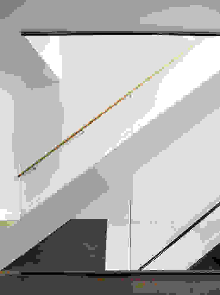 Couloir, entrée, escaliers minimalistes par M Monroe Design Minimaliste