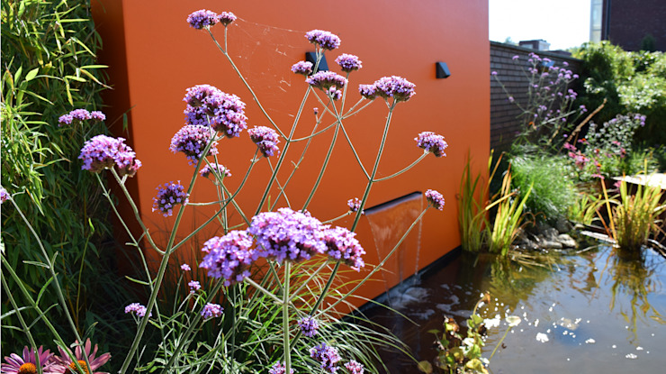 Modern Garden by KLAP tuin- en landschapsarchitectuur Modern
