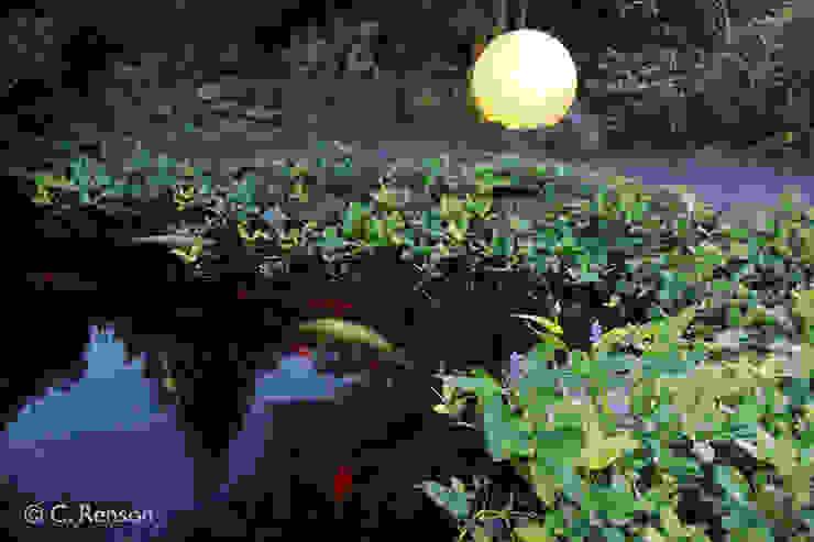 Kois als Blickfang dirlenbach - garten mit stil Garten im Landhausstil
