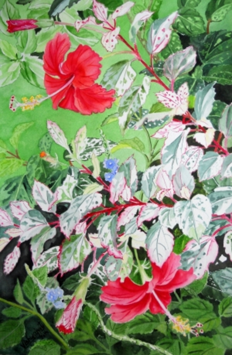 Red Hibiscus Variegated  : asian  by Indian Art Ideas,Asian