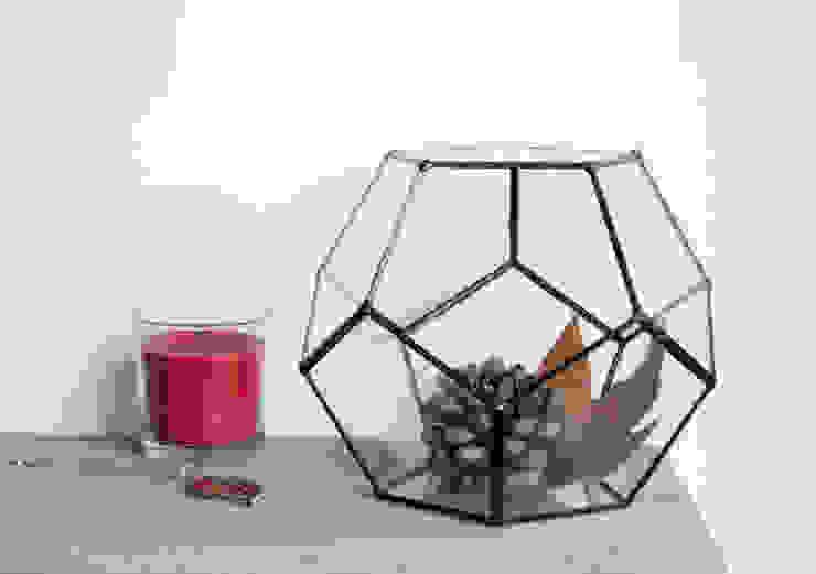 Terrario Dodecaedro mediano:  de estilo industrial de ZetaGlass, Industrial Vidrio