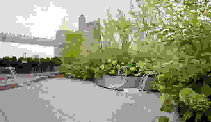 Empire State Loft, Koko Architecture + Design Modern Terrace by Koko Architecture + Design Modern