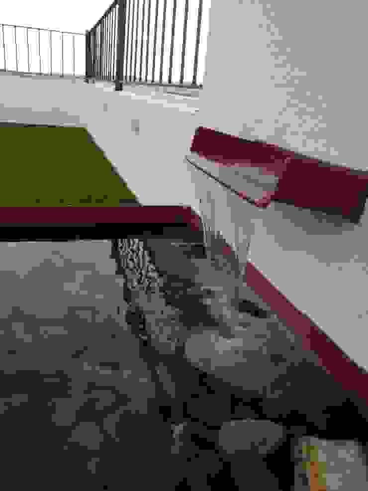 Modern style gardens by Arqca Modern
