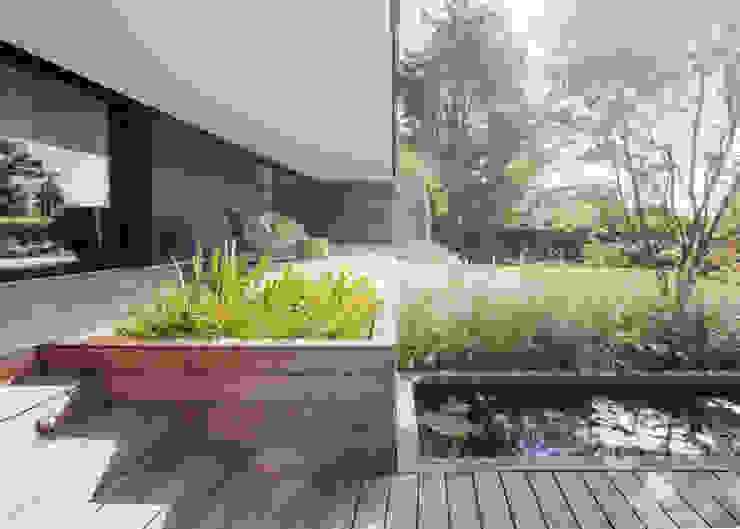 Jardines de estilo  por meier architekten zürich, Moderno Madera Acabado en madera