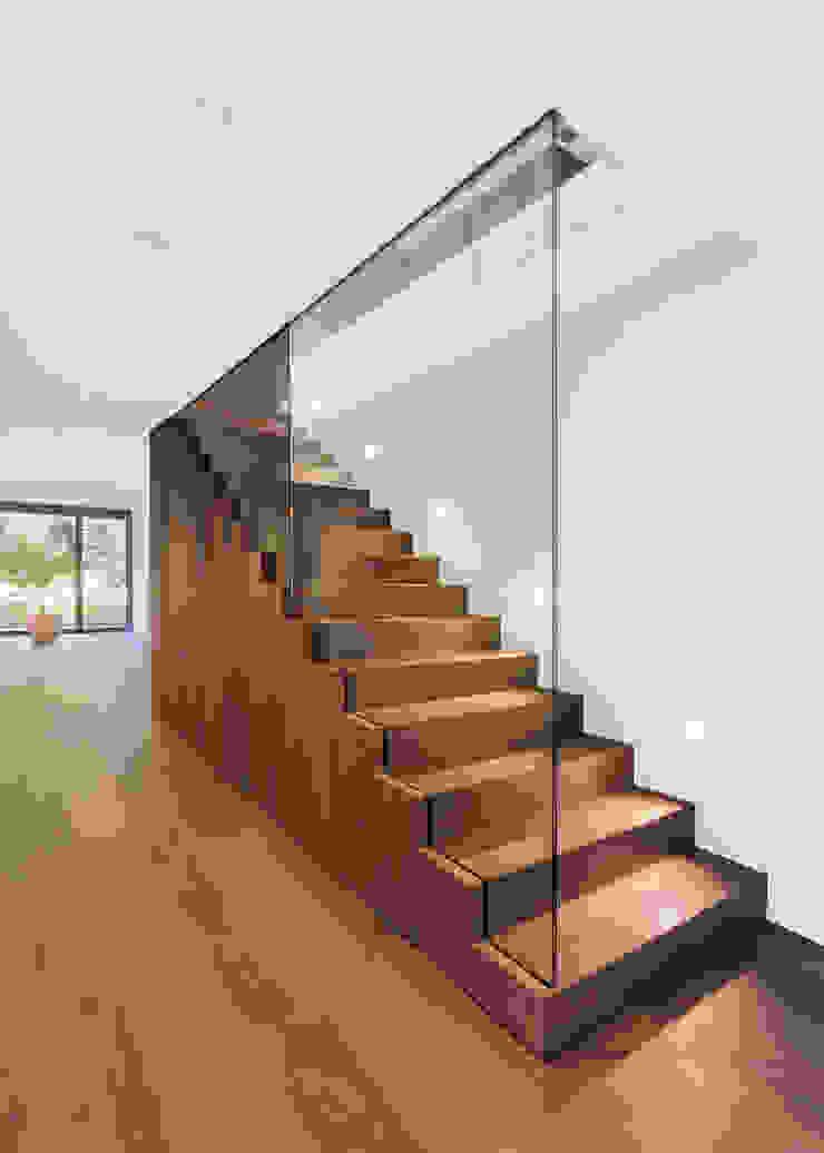 meier architekten zürich 現代風玄關、走廊與階梯 木頭 Brown