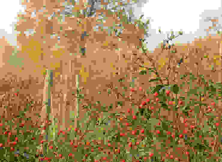 MASSIMO SEMOLA PROGETTAZIONE GIARDINI MILANO Country style garden