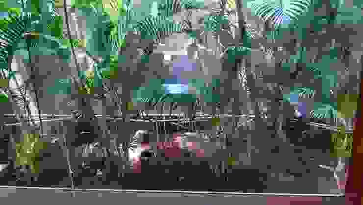 Backdrop Garden - Tropical Setting by ThirdEye Landscapes