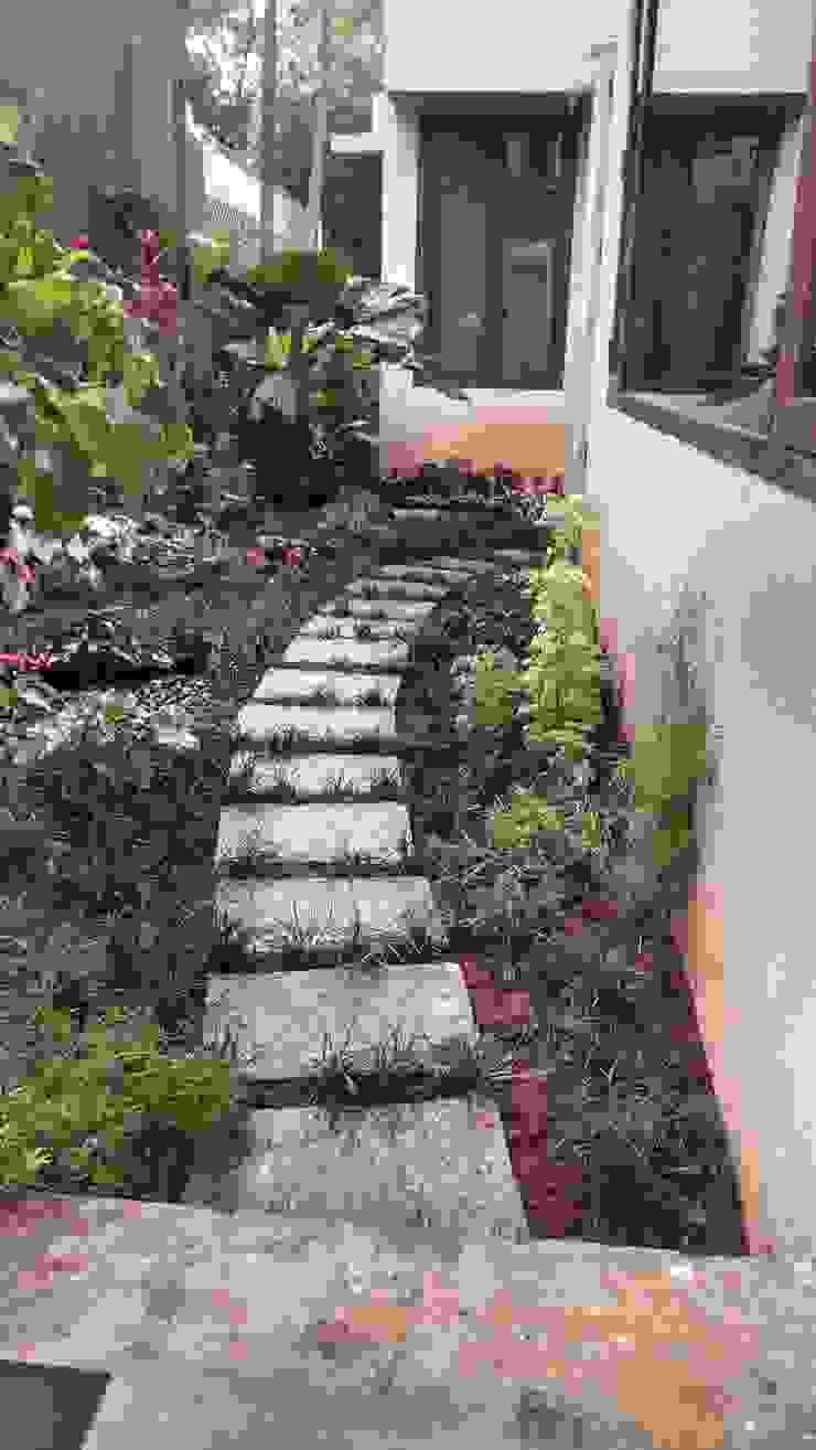 Backdrop Garden—Tropical Setting by ThirdEye Landscapes