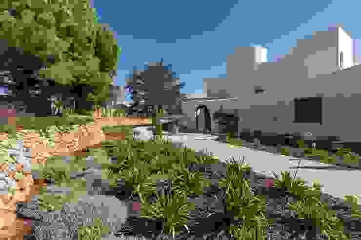 Garden Modern style gardens by studioarte Modern