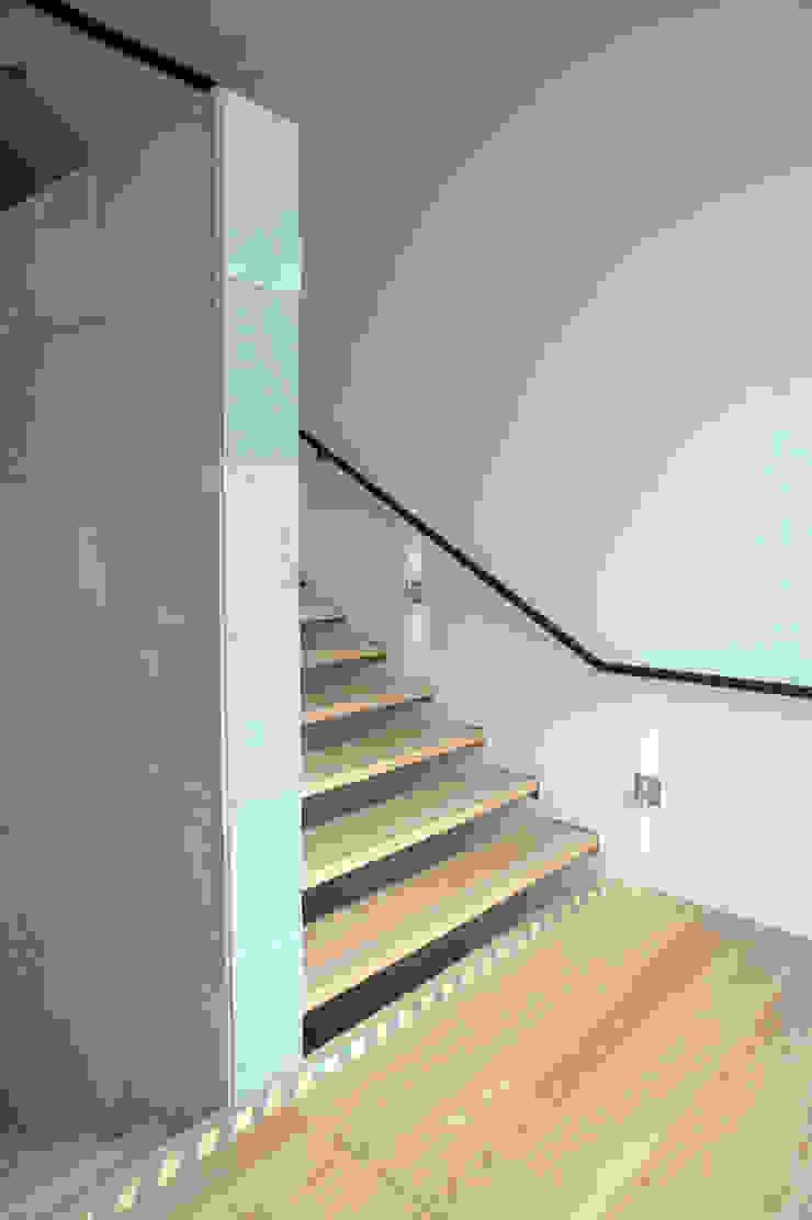 Caziide Estudios y despachos modernos de Taller Plan A Moderno
