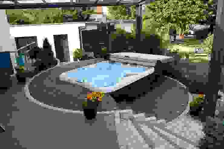 Modern pool by Bodin Pflanzliche Raumgestaltung GmbH Modern