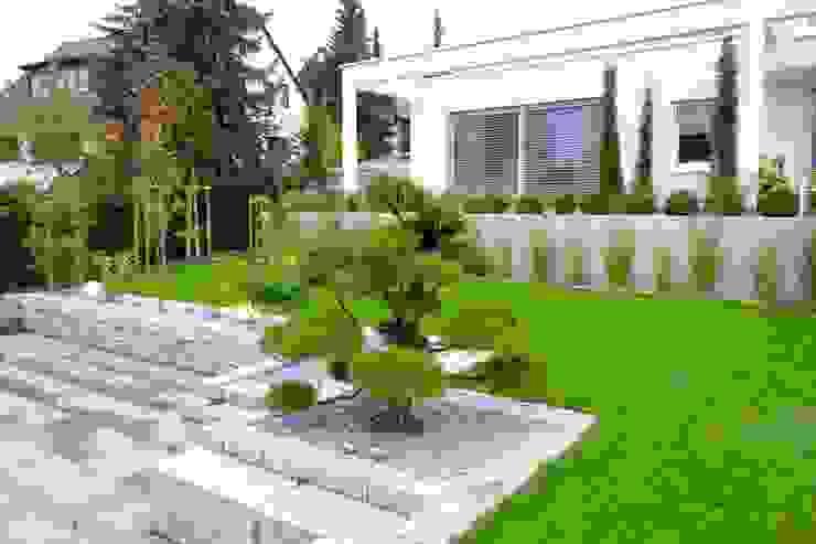 Moderne tuinen van Bodin Pflanzliche Raumgestaltung GmbH Modern