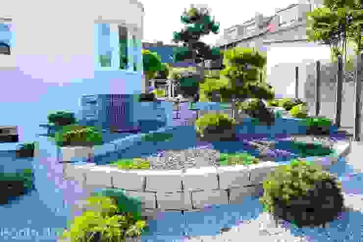 Vườn phong cách hiện đại bởi Bodin Pflanzliche Raumgestaltung GmbH Hiện đại