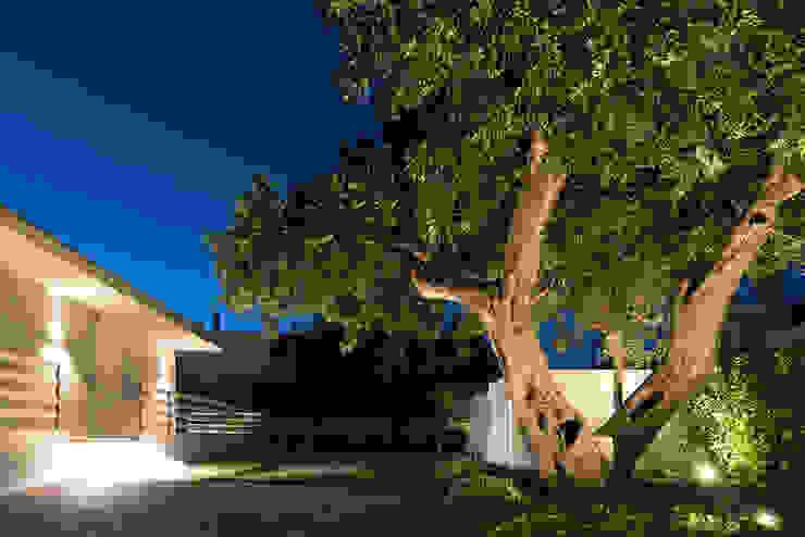 Jardines de estilo moderno de DFG Architetti Associati Moderno