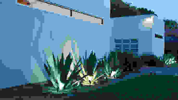 Garden by Matthew Murrey Design, Minimalist