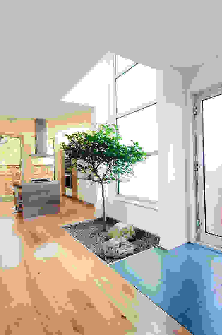 Fold Place Modern kitchen by Linebox Studio Modern