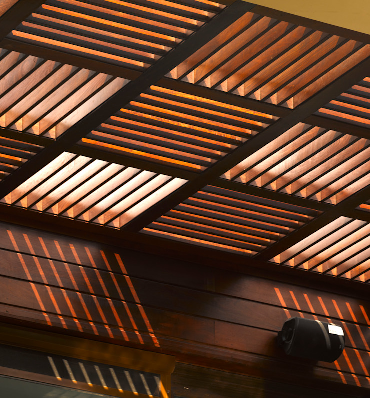 Traveler's House Modern houses by Morphogenesis Modern Wood Wood effect