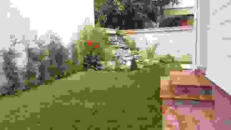 Jardines modernos: Ideas, imágenes y decoración de abelia peyzaj Moderno