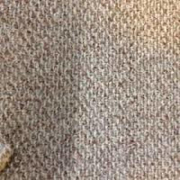 Carpet cleaning and stain removal by Carpet cleaners auckland