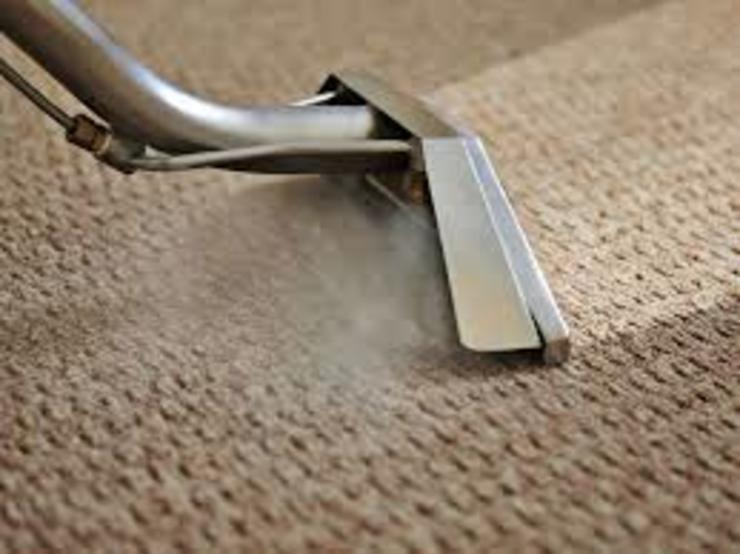 Carpet cleaning project by Carpet cleaners auckland
