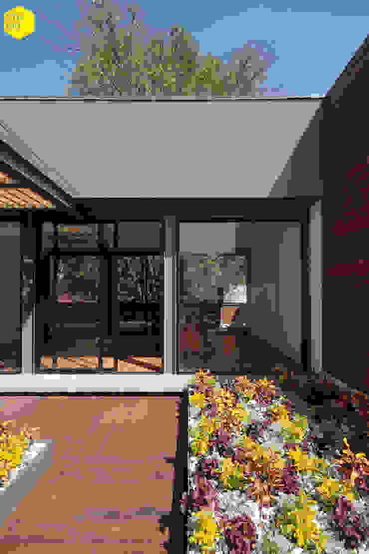 Terraza privada Estudios y despachos minimalistas de ZTUDIO-ARQUITECTURA Minimalista Madera maciza Multicolor