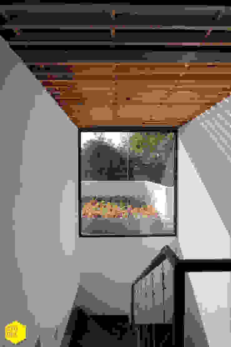 Circulación vertical, iluminación. Estudios y despachos minimalistas de ZTUDIO-ARQUITECTURA Minimalista Madera Acabado en madera