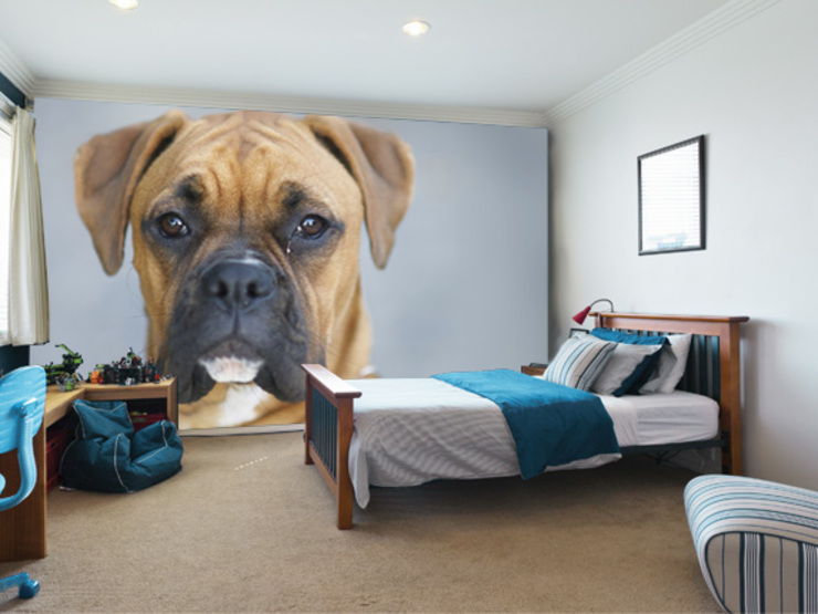 Boxer Dog Wallpaper Chambre d'enfant moderne par Wallsauce.com Moderne