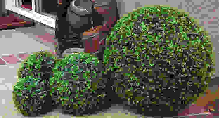 Artificial boxwood balls Modern garden by Sunwing Industries Ltd Modern Plastic