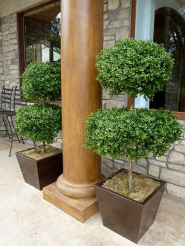 Artificial Topiary Trees Modern houses by Sunwing Industries Ltd Modern Wood Wood effect