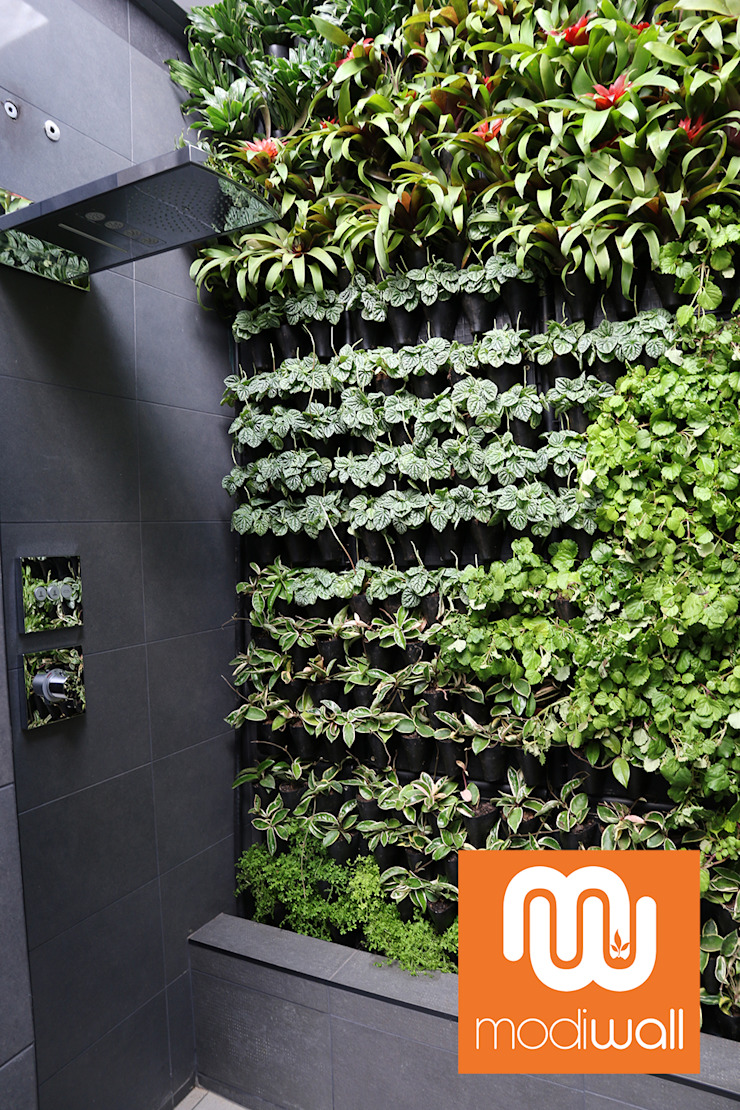 by Modiwall Vertical Gardens Tropical
