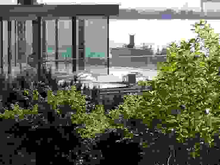 Burckhardt Metall Glas GmbH Casas de estilo moderno