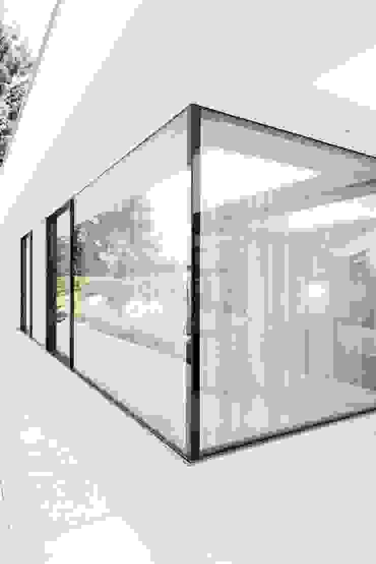 Haus am See 1 Moderne Fenster & Türen von Burckhardt Metall Glas GmbH Modern