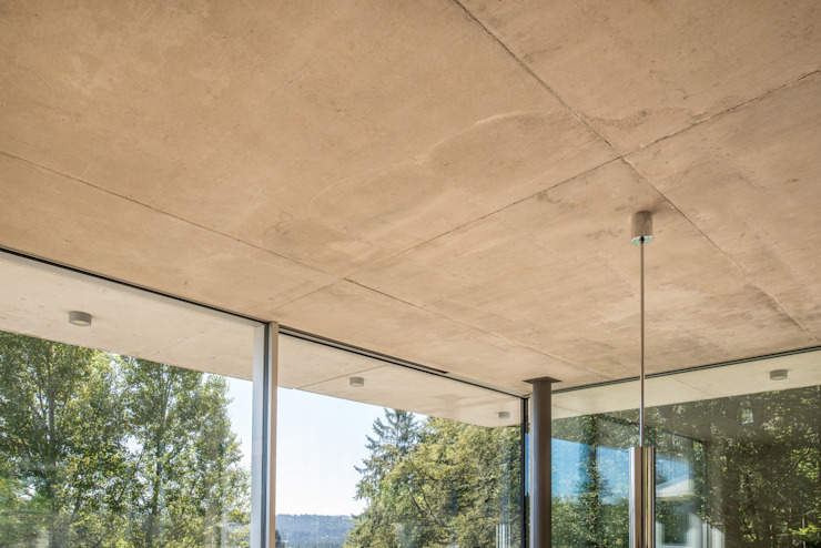 EFH Bauten Moderne Fenster & Türen von Burckhardt Metall Glas GmbH Modern