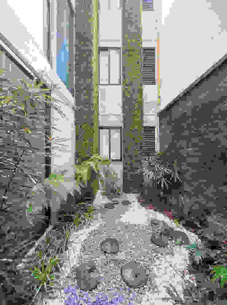 Jardin moderne par PHia Moderne