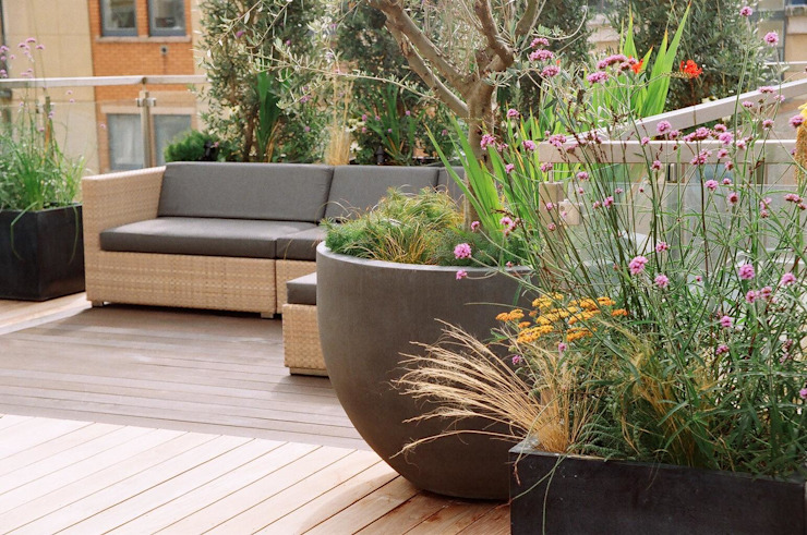 Roof Terrace Garden in Nottinghill, London Modern terrace by GreenlinesDesign Ltd Modern